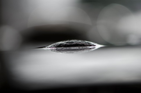 20130207 DSC 0661