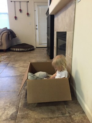 Fina in a box